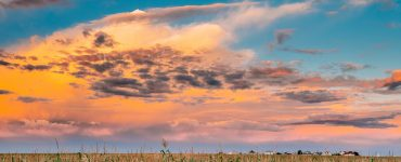 Summer Sunset Evening Clouds Above Countryside Rural Cornfield Landscape. Scenic Dramatic Sky Above Corn Field.
